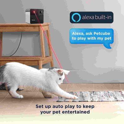 Petcube Play with Bites 2 Pet Cameras